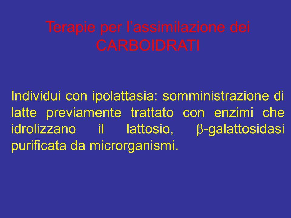 Terapie per l'assimilazione dei CARBOIDRATI