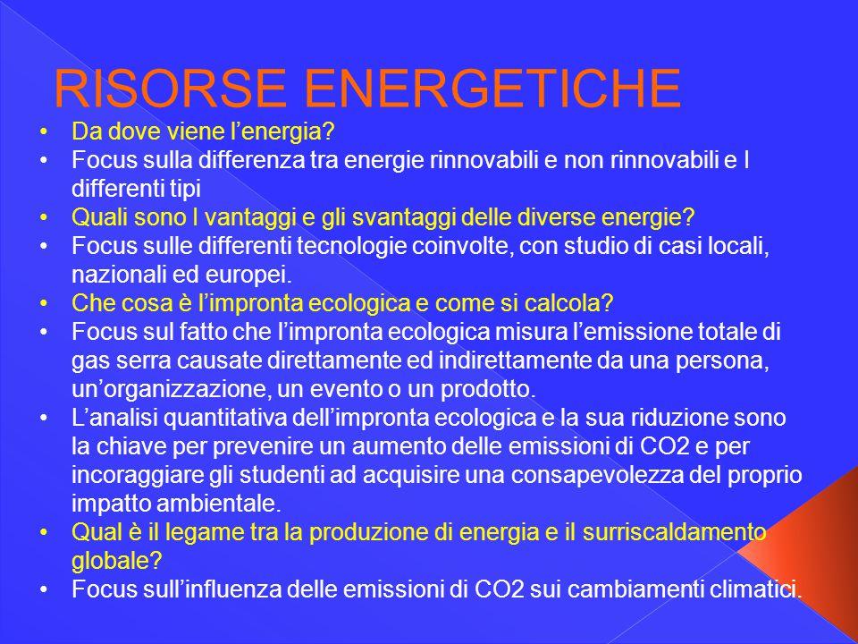 RISORSE ENERGETICHE Da dove viene l'energia