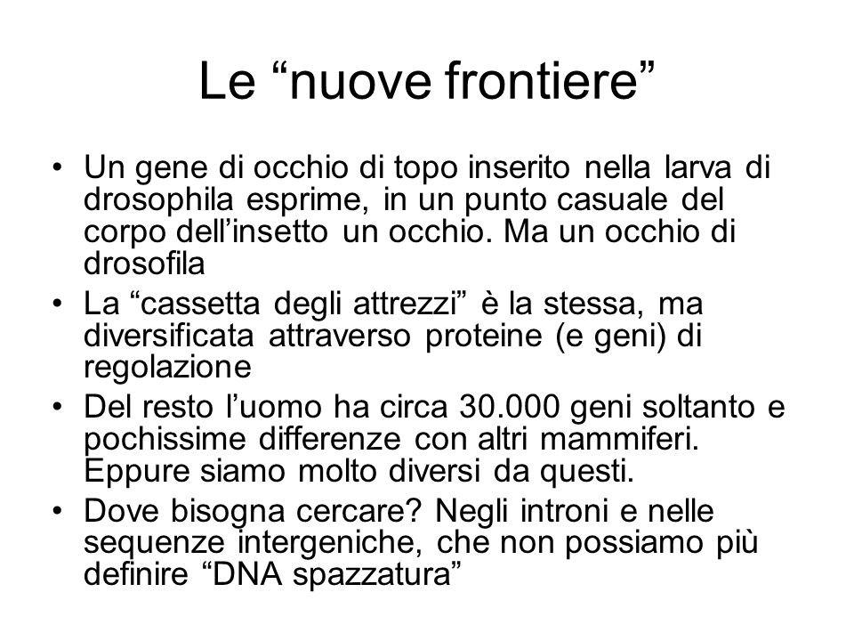 Le nuove frontiere