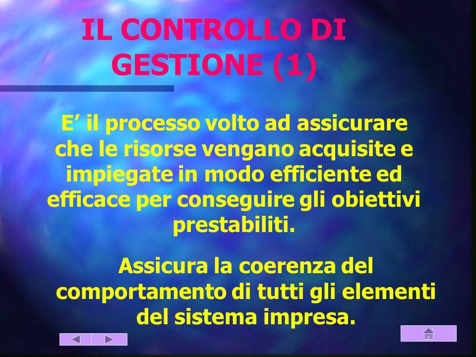 IL CONTROLLO DI GESTIONE (1)
