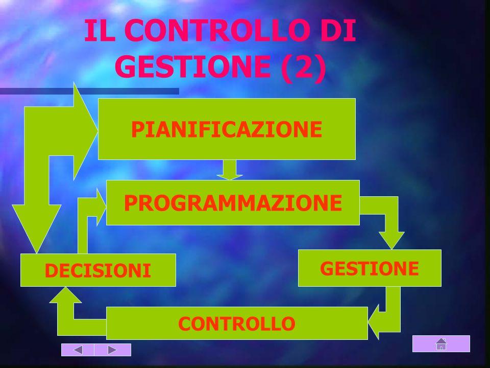 IL CONTROLLO DI GESTIONE (2)