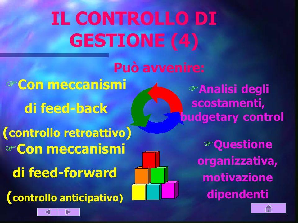IL CONTROLLO DI GESTIONE (4)