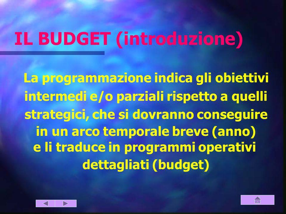 IL BUDGET (introduzione)