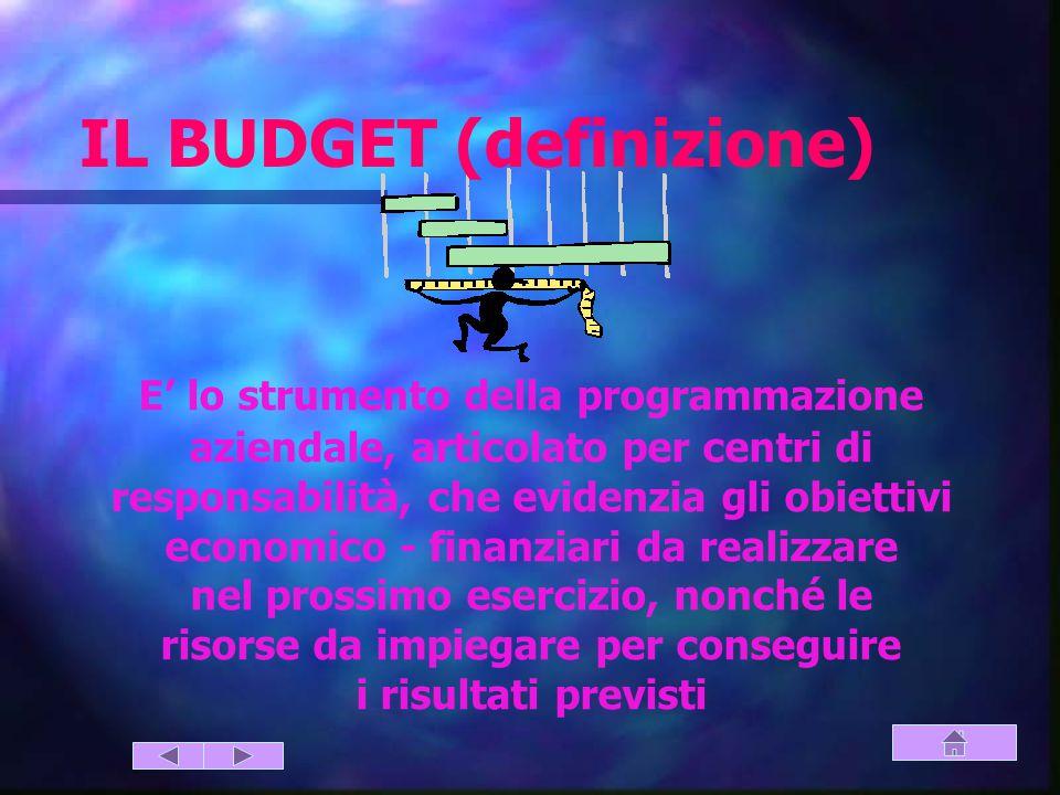 IL BUDGET (definizione)