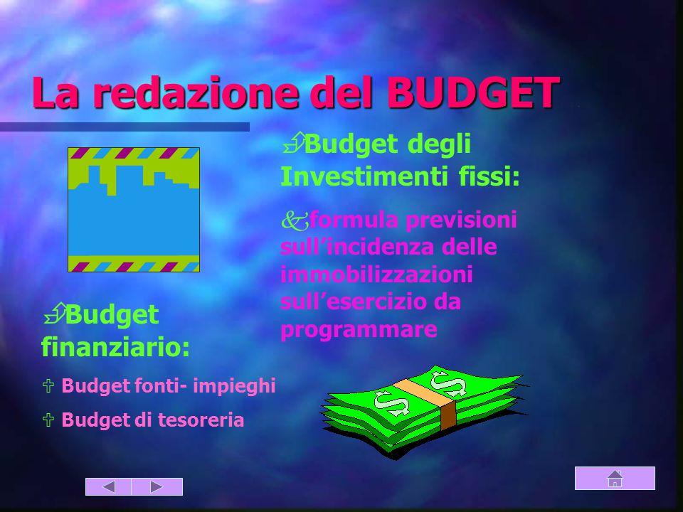 La redazione del BUDGET (finanziario – investimenti)