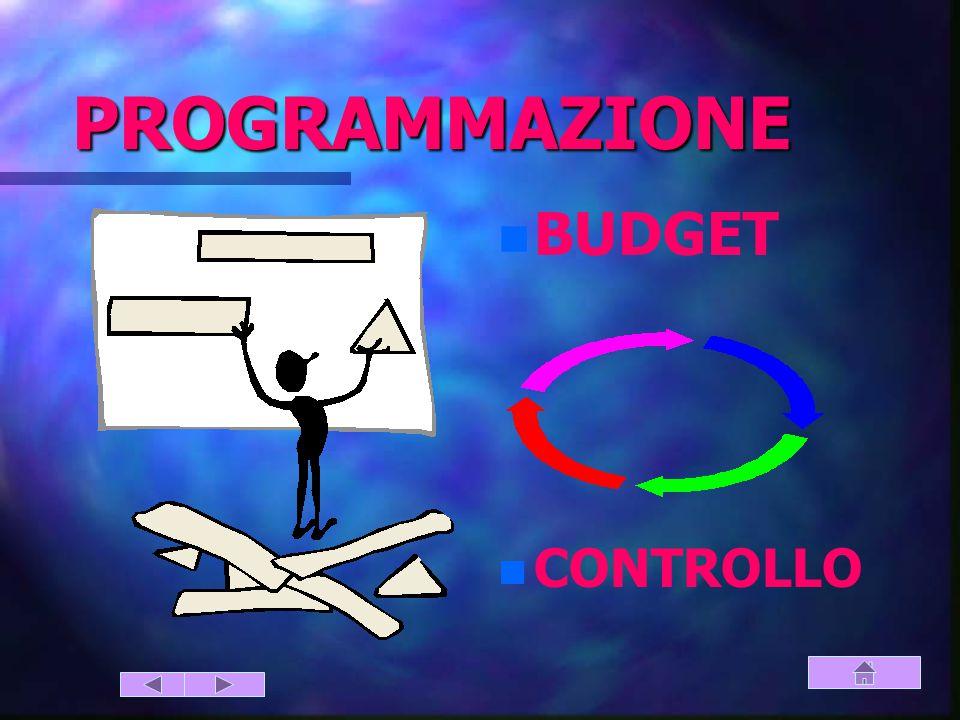 PROGRAMMAZIONE BUDGET CONTROLLO