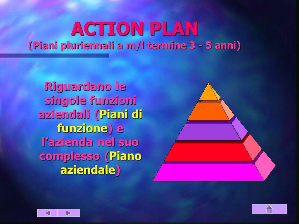 ACTION PLAN (Piani pluriennali a m/l termine 3 - 5 anni)