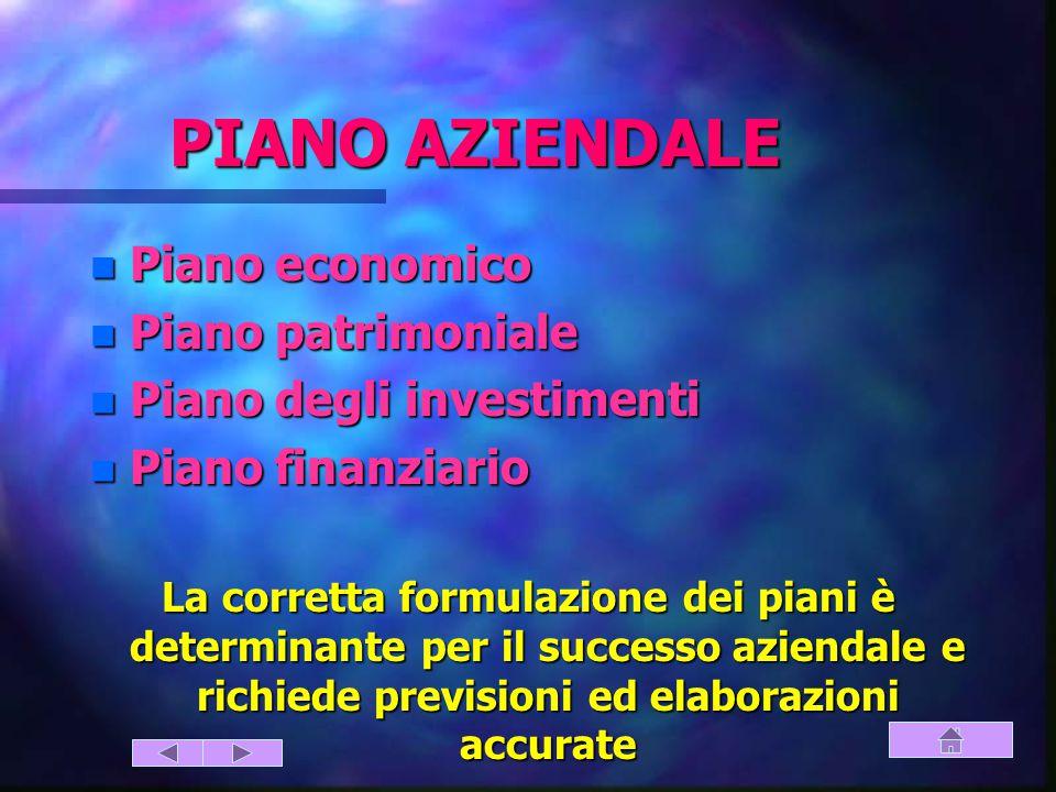 PIANO AZIENDALE Piano economico Piano patrimoniale