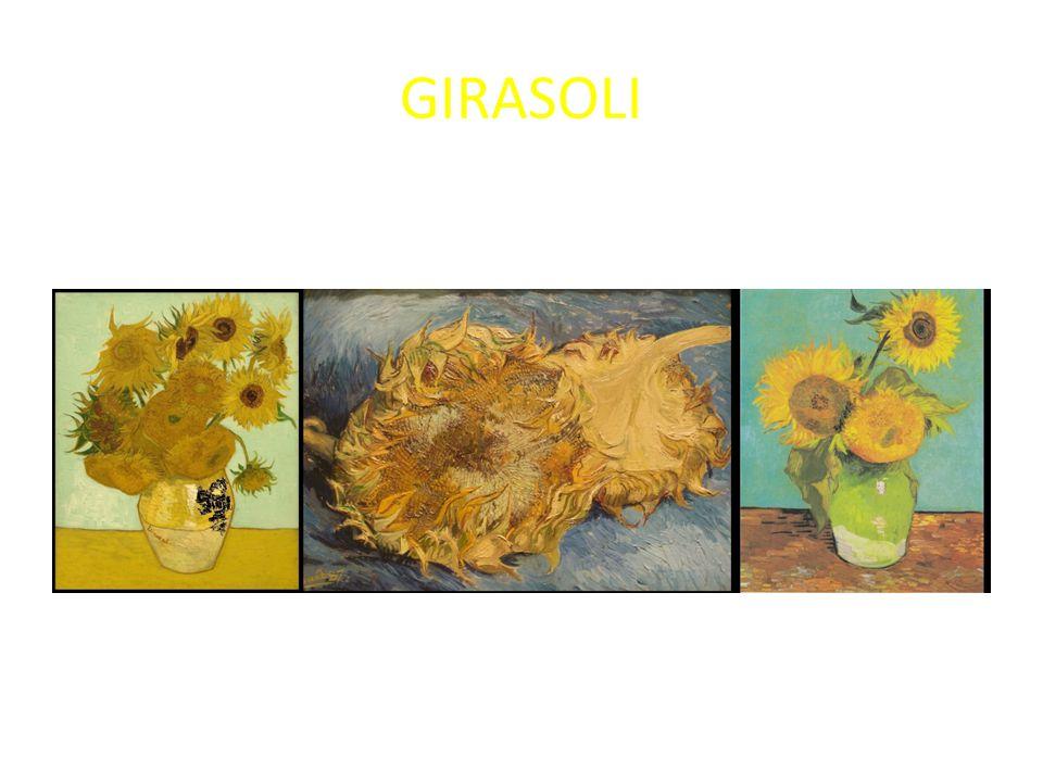 GIRASOLI