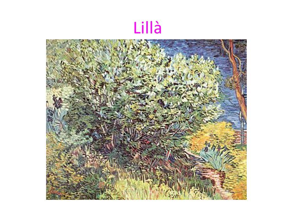 Lillà
