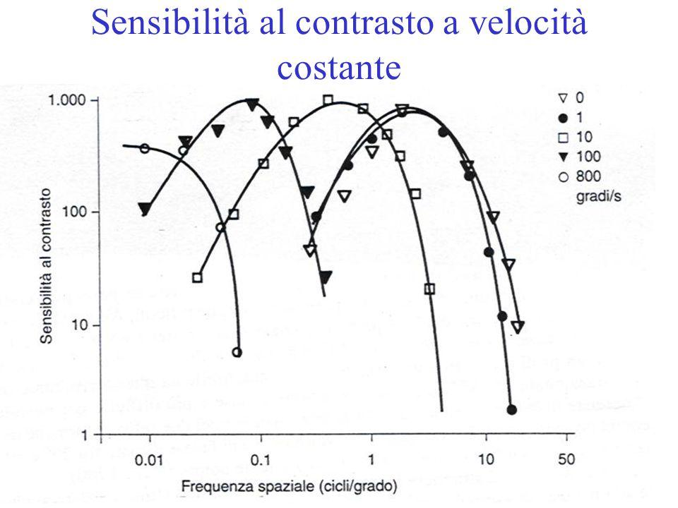 Sensibilità al contrasto a velocità costante