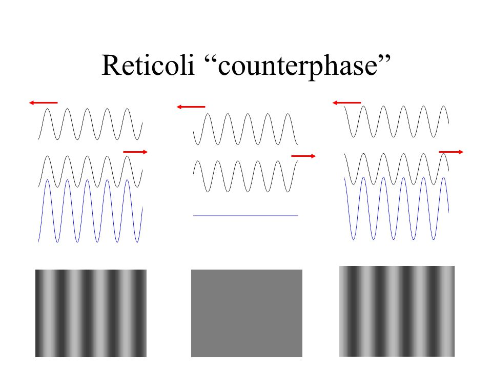 Reticoli counterphase