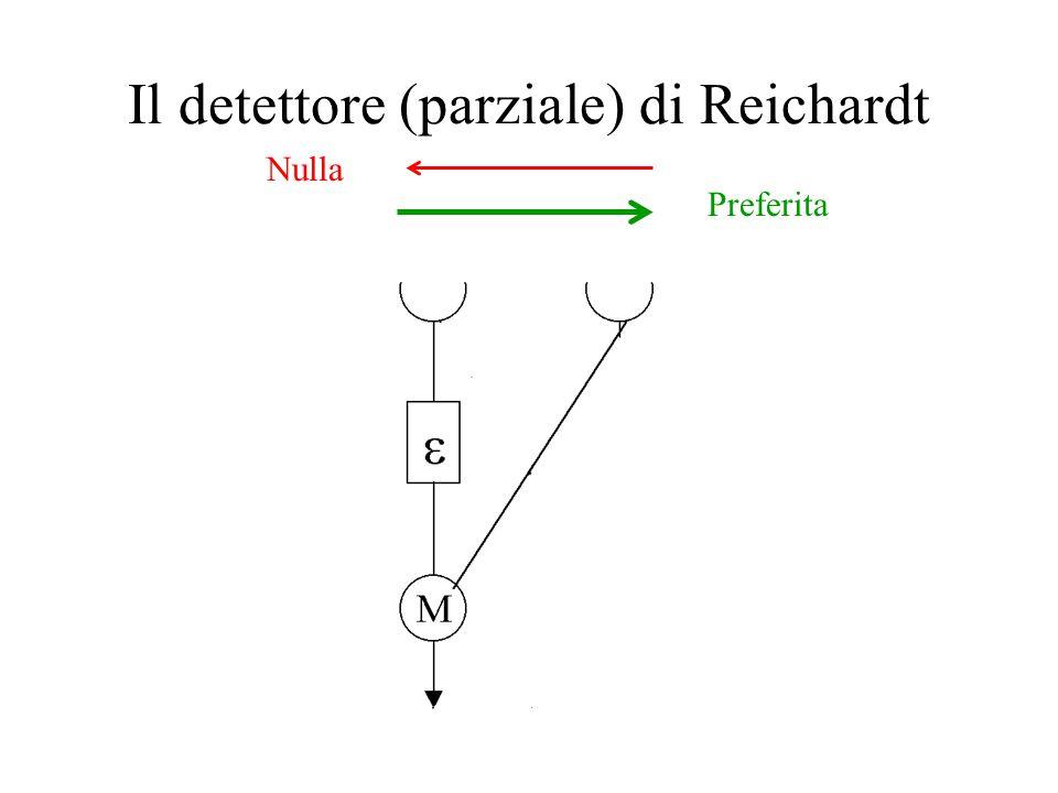 Il detettore (parziale) di Reichardt