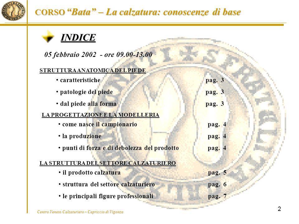 INDICE 05 febbraio 2002 - ore 09.00-13.00 caratteristiche pag. 3