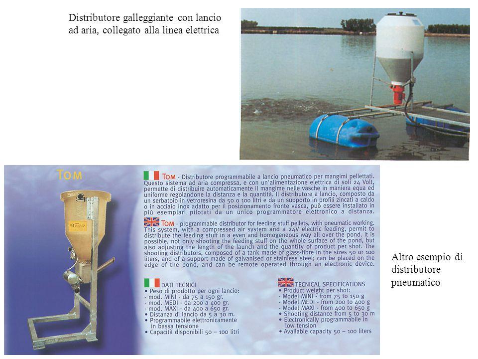 Distributore galleggiante con lancio ad aria, collegato alla linea elettrica