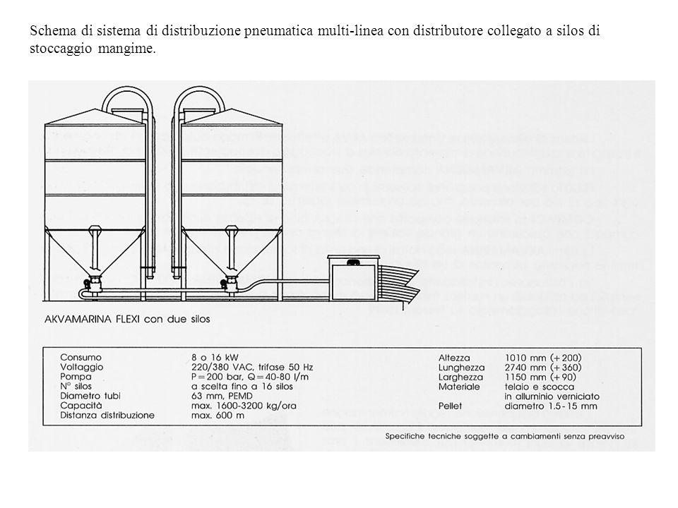 Schema di sistema di distribuzione pneumatica multi-linea con distributore collegato a silos di stoccaggio mangime.