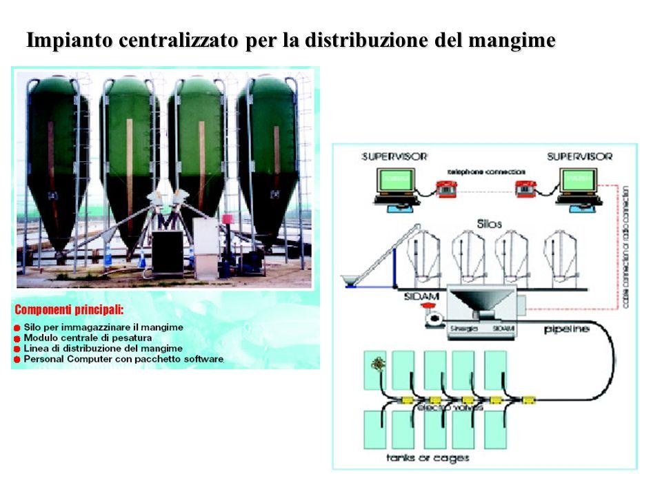 Impianto centralizzato per la distribuzione del mangime