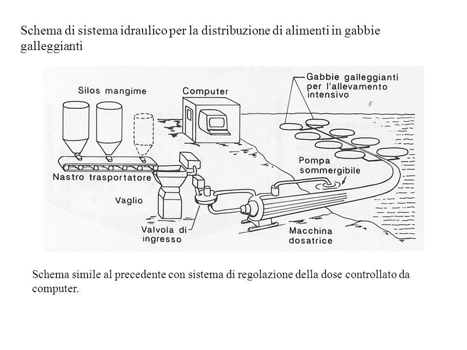 Schema di sistema idraulico per la distribuzione di alimenti in gabbie galleggianti