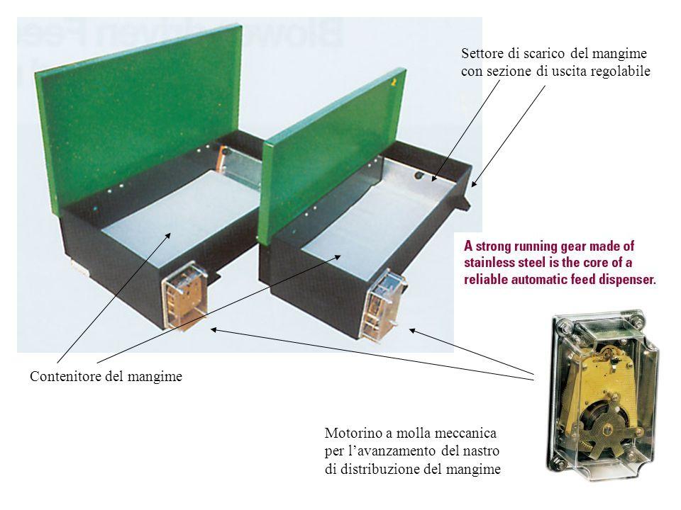 Settore di scarico del mangime con sezione di uscita regolabile