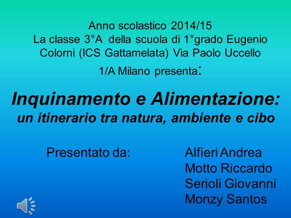 Anno scolastico 2014/15 La classe 3°A della scuola di 1°grado Eugenio Colorni (ICS Gattamelata) Via Paolo Uccello 1/A Milano presenta: