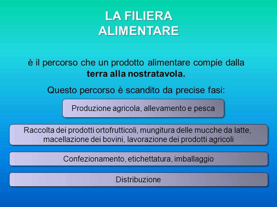 LA FILIERA ALIMENTARE è il percorso che un prodotto alimentare compie dalla terra alla nostratavola.