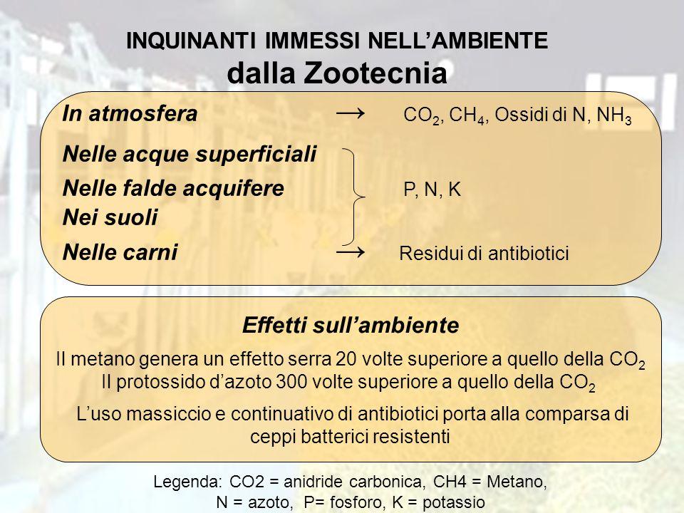 INQUINANTI IMMESSI NELL'AMBIENTE dalla Zootecnia Effetti sull'ambiente
