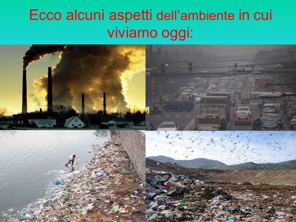 Ecco alcuni aspetti dell'ambiente in cui viviamo oggi:
