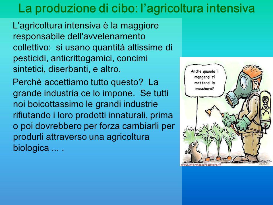 La produzione di cibo: l'agricoltura intensiva