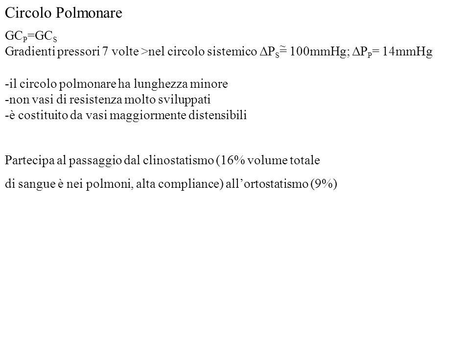 Circolo Polmonare GCP=GCS