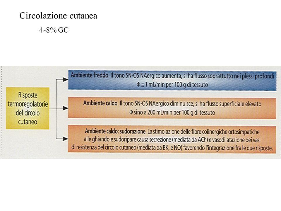 Circolazione cutanea 4-8% GC