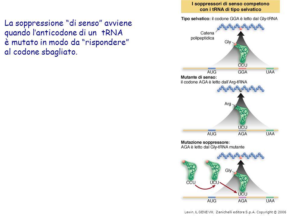 La soppressione di senso avviene quando l'anticodone di un tRNA