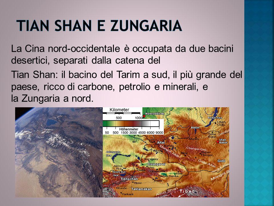 TIAN SHAN E ZUNGARIA La Cina nord-occidentale è occupata da due bacini desertici, separati dalla catena del