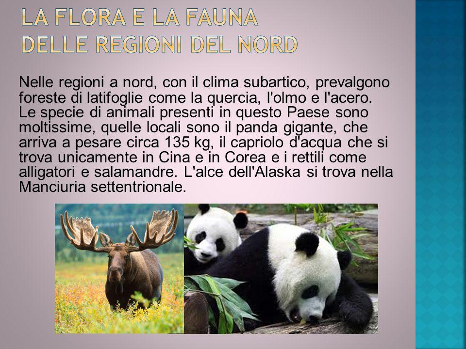 LA flora e LA fauna delle regioni del Nord