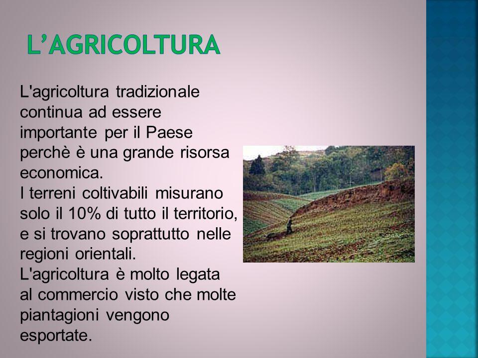 L'agricoltura L agricoltura tradizionale continua ad essere importante per il Paese perchè è una grande risorsa economica.