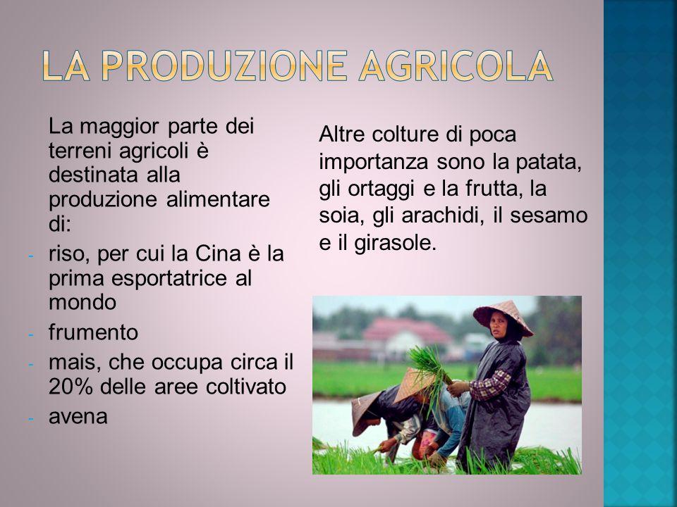 La produzione agricola