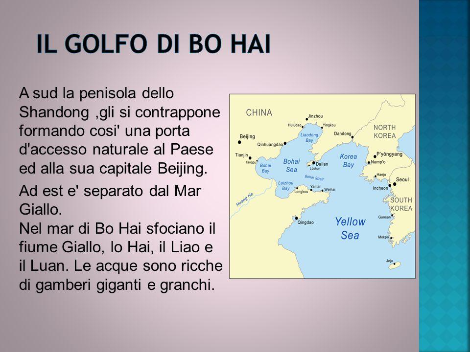 Il GOLFO DI BO HAI