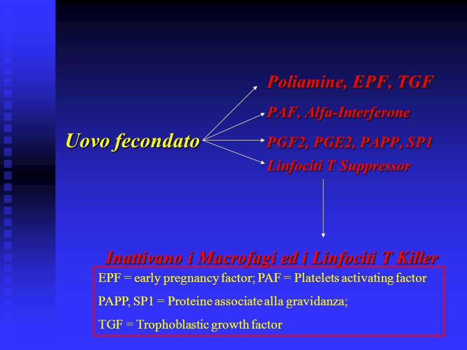 Uovo fecondato PGF2, PGE2, PAPP, SP1