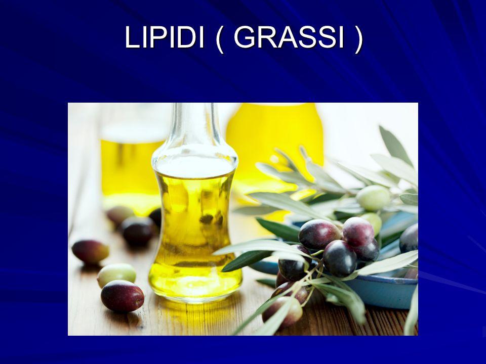 LIPIDI ( GRASSI )