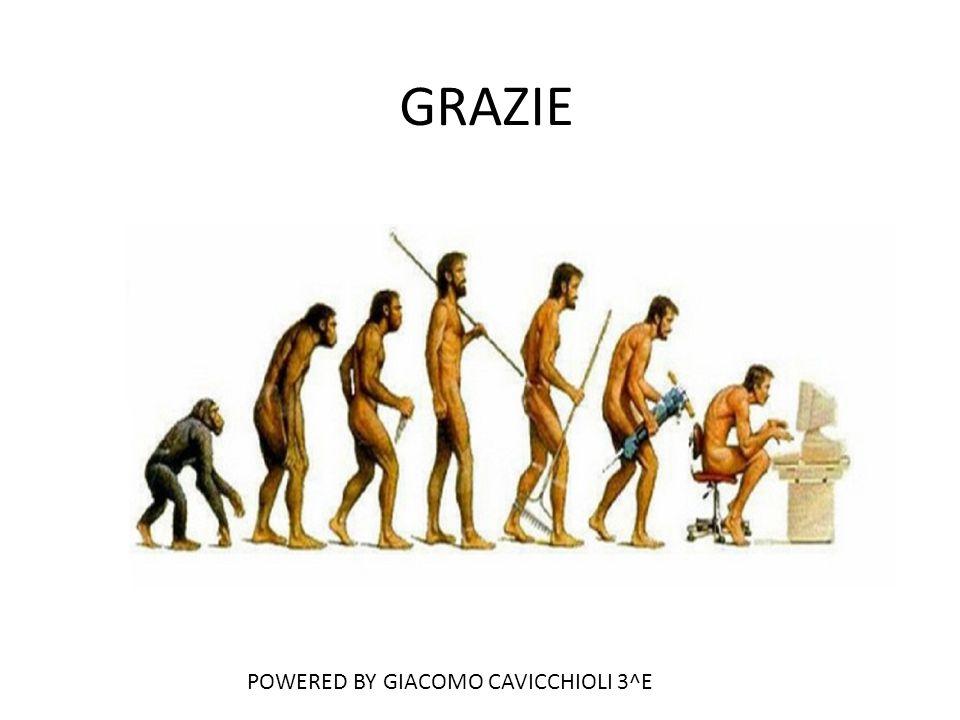 GRAZIE POWERED BY GIACOMO CAVICCHIOLI 3^E