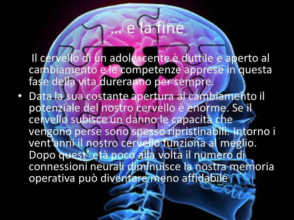 … e la fine Il cervello di un adolescente è duttile e aperto al cambiamento e le competenze apprese in questa fase della vita dureranno per sempre.