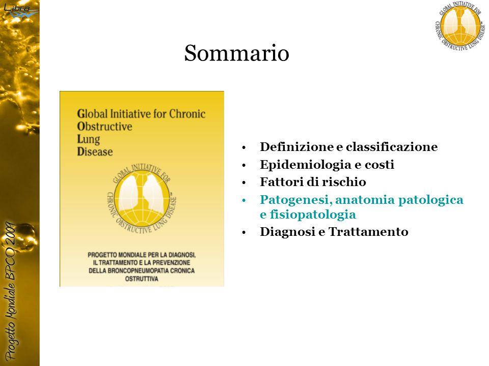 Sommario Definizione e classificazione Epidemiologia e costi