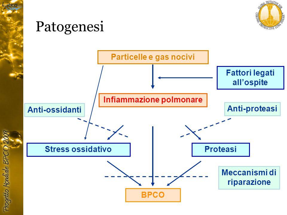 Patogenesi Particelle e gas nocivi Fattori legati all'ospite