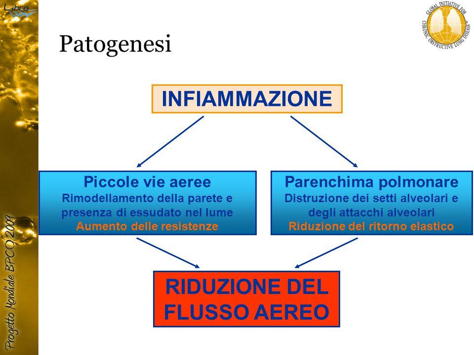 Patogenesi INFIAMMAZIONE RIDUZIONE DEL FLUSSO AEREO Piccole vie aeree