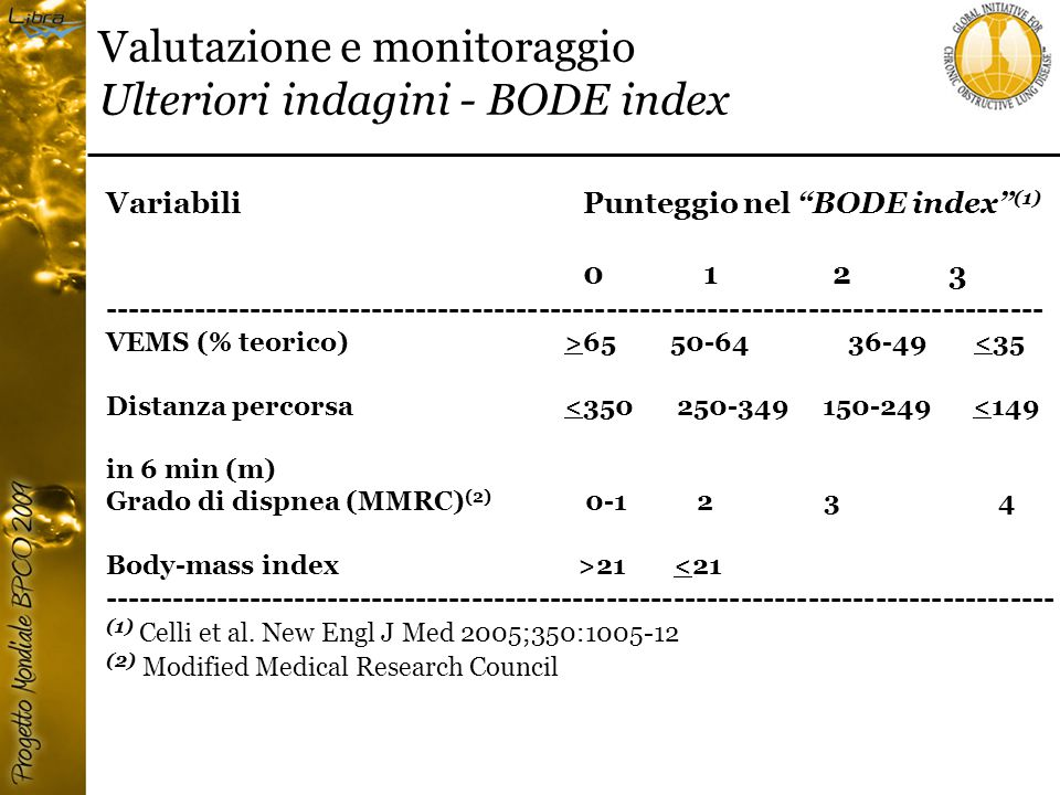 Valutazione e monitoraggio Ulteriori indagini - BODE index