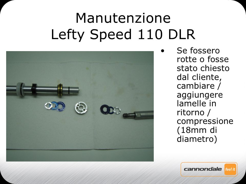 Manutenzione Lefty Speed 110 DLR