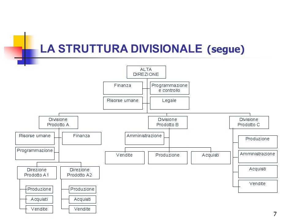 LA STRUTTURA DIVISIONALE (segue)