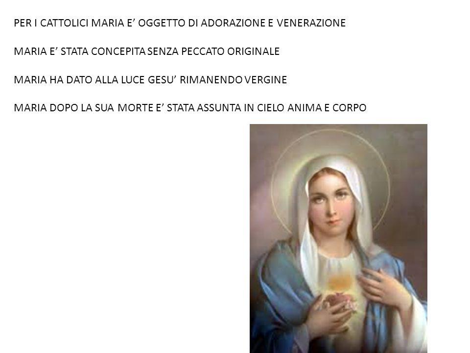 PER I CATTOLICI MARIA E' OGGETTO DI ADORAZIONE E VENERAZIONE