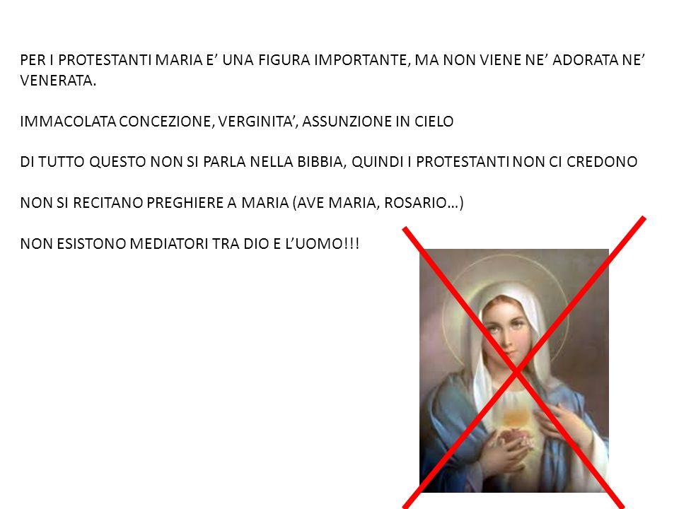 PER I PROTESTANTI MARIA E' UNA FIGURA IMPORTANTE, MA NON VIENE NE' ADORATA NE' VENERATA.