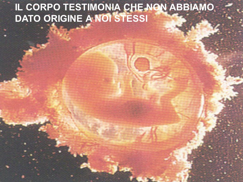 IL CORPO TESTIMONIA CHE NON ABBIAMO DATO ORIGINE A NOI STESSI
