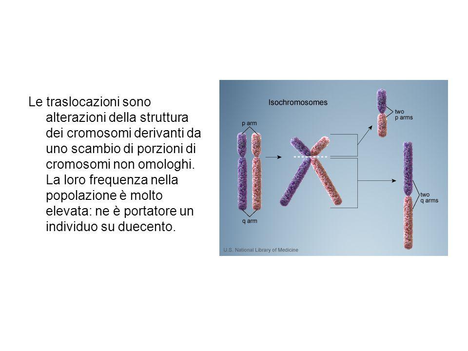 Le traslocazioni sono alterazioni della struttura dei cromosomi derivanti da uno scambio di porzioni di cromosomi non omologhi.